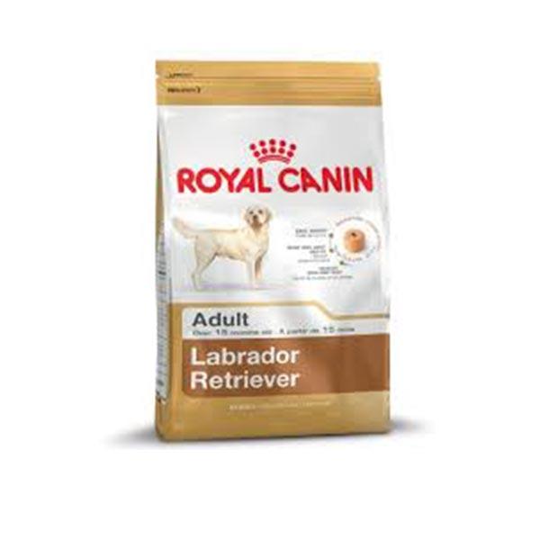 Royal Canin Labrador Retriever fajtatáp 12 kg
